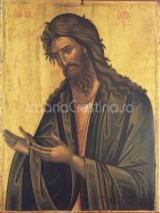 Icoana Sfantul Ioan Botezatorul #2