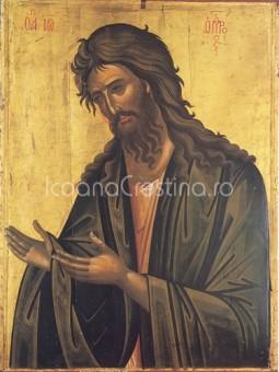 ioan-botezatorul-255x340 Icoana Sfantul Ioan Botezatorul #2